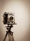 Weinlese-Presse-Kamera auf hölzernem Stativ Lizenzfreies Stockbild