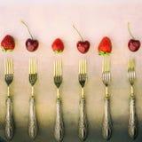 Weinlese quadrierte Zusammensetzung mit Silbergabelerdbeere-annd Kirschen Lizenzfreies Stockbild