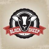 Weinlese-Retro- schwarze Schaf-Emblem Lizenzfreie Stockbilder