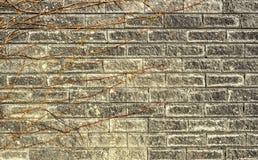 Weinlese-Schmutzwand des Ziegelsteines alte mit Sprungsnahaufnahmebeschaffenheit Lizenzfreie Stockbilder