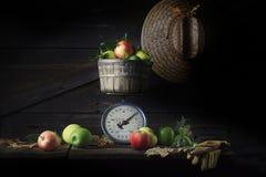 Weinlese-Skala mit Äpfeln Stockbild