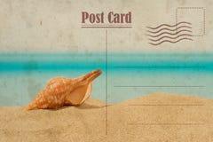 Weinlese-Sommer-Postkarte Seashell auf dem Sand stockbilder