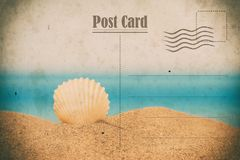 Weinlese-Sommer-Postkarte Seashell auf dem Sand stockfotografie