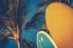 Weinlese-Surfbretter und Palmen Stockfotos