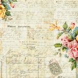 Weinlese-Text-Hintergrund mit Blumenfeld Stockfotografie