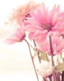 Weinlese Tone Flowers lizenzfreies stockbild