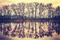 Weinlese tonte die Baumschattenbilder, die in einem See reflektiert wurden Lizenzfreie Stockfotos