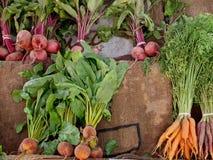 Weinlese Veggies Stockbilder