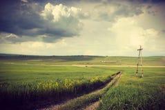 Weinlese-Weizen-Feld mit Schotterweg Lizenzfreie Stockfotos