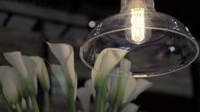 Weinlesebeleuchtungslampe stock video