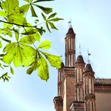 Weinlesebild der gotischen Kirche Stockbild