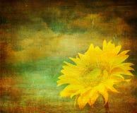 Weinlesebild der Sonnenblume vektor abbildung