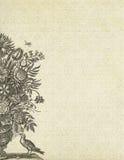 Weinleseblumenhintergrundblumenvase und -vogel Stockfotografie