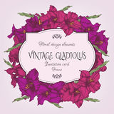 Weinleseblumenkarte mit einem Rahmen der Hand gezeichneten Gladiole blüht Stockfotografie