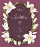 Weinleseeinladungskarte mit einem Rahmen von weißen Lilien Stockfotografie