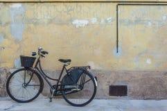 Weinlesefahrrad auf alter Wand Stockfoto