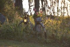 Weinlesefahrrad im ländlich idyllisch und entspannenden skandinavischen Garten lizenzfreie stockbilder