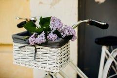 Weinlesefahrrad mit Blume Stockbild