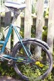 Weinlesefahrradfelge Stockfoto