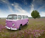 Weinlesefahrzeug-Blumenfeld Stockfotografie