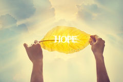 Weinlesefarbton, ein gelbes Blatt im Himmel der Hoffnung halten stockbilder