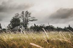 Weinlesefilter des alten Bauernhofes auf dem Feld lizenzfreie stockfotografie
