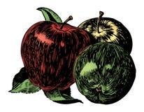 Weinlesefünfziger jahre Äpfel Lizenzfreie Stockfotos
