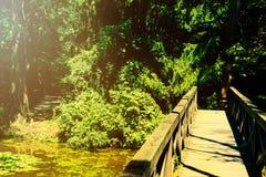 Weinlesefoto der Brücke im Wald Stockfoto