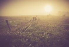 Weinlesefoto der nebeligen Wiese des Morgens im Sommer Landwirtschaftliche Landschaft Lizenzfreie Stockbilder