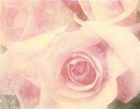 Weinlesefoto der Rosen stockbild