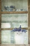 Weinlesefoto des Lavendels Lizenzfreies Stockbild
