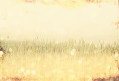 Weinlesefoto von Feld und Blendenfleck pic Stockfoto