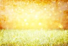 Weinlesefoto von Feld und Blendenfleck pic Stockbild
