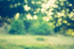 Weinlesefoto von Sommerzeit bokeh Hintergrund Lizenzfreie Stockfotos