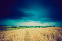 Weinlesefoto von Sturmwolken über Weizenfeld Lizenzfreies Stockbild