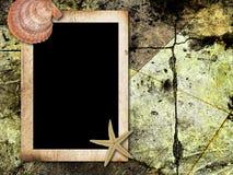 Weinlesefotofeld mit Seeshells Stockbild