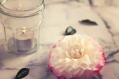 Weinlesegefühlkamelienblumen- und -glaskerze Stockfotos