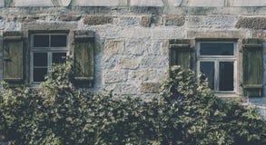 Weinlesehausfassade bedeckt mit Reben Stockbilder