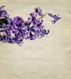 Weinlesehintergrund mit Blume Lizenzfreies Stockbild