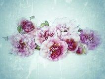 Weinlesehintergrund mit Blumen Stockbilder