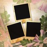Weinlesehintergrund mit drei Feldern für Foto Stockfoto