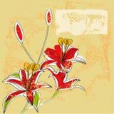 Weinlesehintergrund mit Lilienblumen Stockfoto