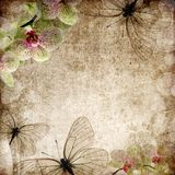 Weinlesehintergrund mit Orchideen Stockbilder