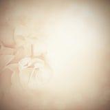 Weinlesehintergrund mit Rosen-Blumen Stockfoto