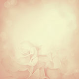 Weinlesehintergrund mit Rosen-Blumen Lizenzfreies Stockfoto