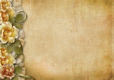 Weinlesehintergrund mit schönen Rosen Stockfoto