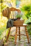 Weinleseholzstuhl im Garten lizenzfreie stockbilder