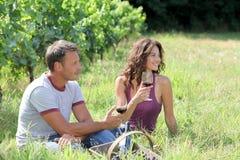Weinlesejahreszeit Stockfotos