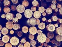 Weinleseklotz schnitt hölzernen Waldhintergrund, Retro- instagram Art lizenzfreies stockbild