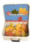 Weinlesekoffer mit Herbstblättern Stockbild